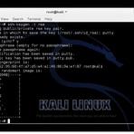 Linux - Como copiar e colar textos no terminal do linux?