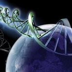 O voo espacial do DNA