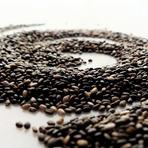 Chia Benefícios da semente que ajuda emagrecer