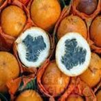 Granadilha | Fruta originária da América do Sul