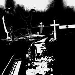 Terror em preto e branco: Novo trailer de White Night