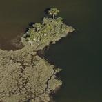 Sistema brasileiro de áreas protegidas está em risco