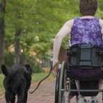 Entenda mais a Esclerose Múltipla