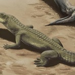 Animais - Conheçam o Phytossauros, Dinossauro ou Crocodilo?