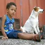 Cão leva menino perdido para casa: 3 anos