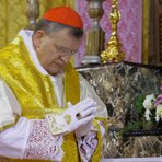 Religião - Cardeal Burke declara: O Papa não tem poder de mudar a doutrina da Igreja