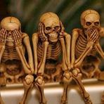 Curiosidades - 10 fatos surpreendentes sobre o esqueleto humano