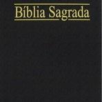 Livros - A Bíblia em PDF