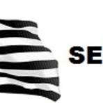 Apostila ANALISTA EM PLANEJAMENTO, ORÇAMENTO E FINANÇAS PÚBLICAS (SEFAZ-SP)2015