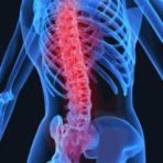 Ciência - Seu corpo foi projetado para estar sempre em movimento. Você anda, corre, senta, pega objetos, carrega peso, equilibra-s