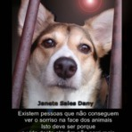 Homenagem a minha HANNA - cachorrinha bacana - O sorriso dos animais