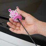Como evitar o roubo do enfeite de antena do seu carro ?