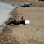 Homem é morto a pedradas e tem corpo jogado no Lago de Furnas