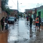 Chuva provoca alagemteno e queda de árvores e afeta o fornecimento de energia elétrica