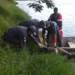Corpo de homem é encontrado na Lagoa da Pampulha, em Belo Horizonte