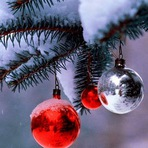 5 fatos estranhos sobre o Natal