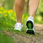 Vida saudável através da caminhada