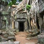 Angkor Wat, no Camboja
