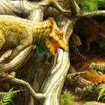 Animais - O primeiro Dinossauro com Chifres Norte Americano