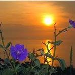 Poesias - Quando o dia começa a clarear...