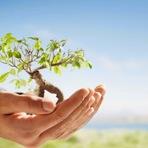 Conceito e definição de Sustentabilidade Ecológica