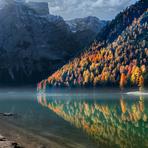 Estilo de Vida - Linda imagem de floresta e seu reflexo no lago