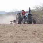 Agricultores de três municípios do Rio Grande do Norte receberão Garantia Safra 2013/2014.