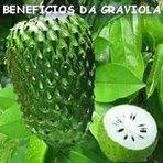Os maravilhosos benefícios da graviola !...Benefícios medicinais da graviola São inúmeras as propriedades e