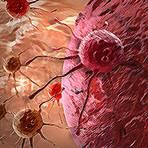 Nova descoberta dá um grande passo para a cura do Câncer