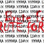 Segurança - Introdução ao Password Cracking - Um brute force com Hydra