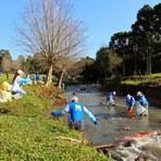 Meio ambiente - Plataforma EducaRES reúne experiências em resíduos sólidos