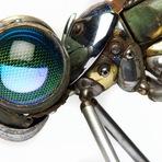Artista cria esculturas de insetos incríveis usando velhas peças de carro e sucata