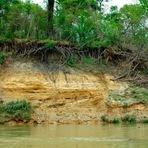 Assoreamento de rios: o que é e como evitar