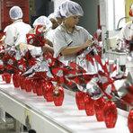 Páscoa 2015 Deve Oferecer 26 Mil Vagas em Empregos Temporários