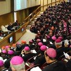 Católicos modernistas e a pressão sobre o próximo Sínodo da Família, visando a revolução na Igreja