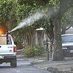 A Dengue e Febre Chicungunha são alguns dos perigos causados por lixo e entulhos jogados em terrenos baldio
