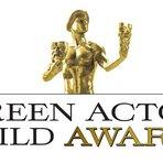 Veja Agora a Lista de Vencedores do Screen Actors Guild Awards 2015