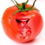 Ciência - Poderosos e ricos benefícios do tomate