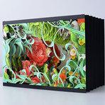 Designer gráfico polonês cria belas ilustrações botânicas