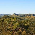 Bióloga diz que áreas de preservação brasileiras podem ser referência mundial