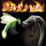 Mistérios - Cuidado com as serpentes ofuscantes... Tenha muito cuidado com as serpentes ofuscantes. O seu brilho pode incomodar as