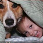 Animais - Dormir com animais de estimação na cama - Por Martha Follain