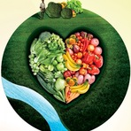 Descubra a Magia dos Alimentos Biodinâmicos