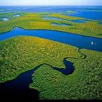 Nossa água vem da Amazônia