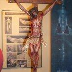 Professor faz Jesus Crucificado seguindo os dados do Santo Sudário
