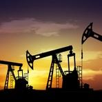 Os Hidrocarbonetos e o Petróleo