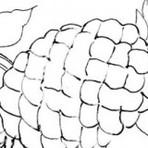 Desenhos para panos de prato e como fazer o seu pano passo a passo
