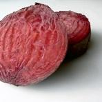 Proteína das plantas usada como Sangue Humano - Blog Rais