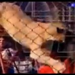 Vídeos - Vídeo - Domadora é atacada por leão em circo no Egito
