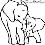 Desenhos Para Colorir: Elefante